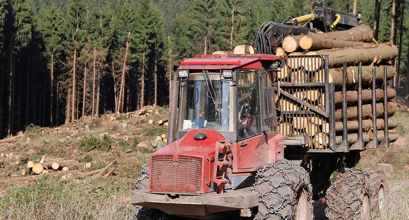 RYCO Forestry